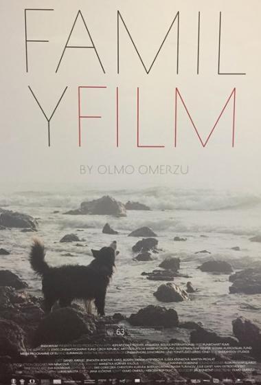 Družinski film - poster