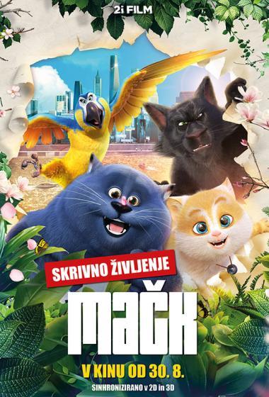 Skrivno življenje mačk (sinhronizirano)  - poster