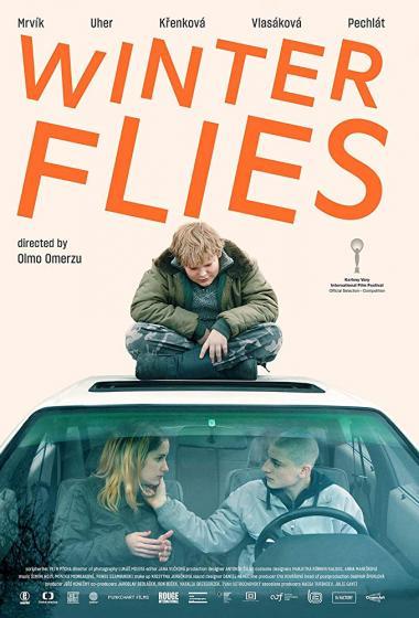 Zimske muhe   Filmsko gledališče - poster