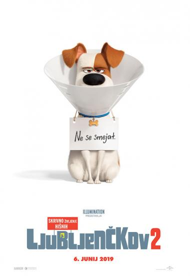 Skrivno življenje hišnih ljubljenčkov 2 (sinhronizirano) + delavnica - poster
