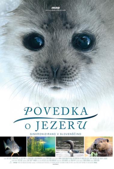 Povedka o jezeru (sinhronizirano) - poster