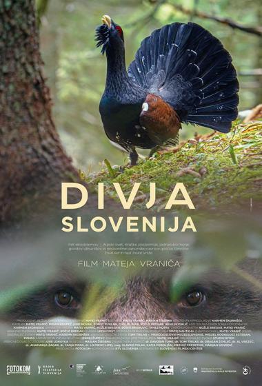 Divja Slovenija - poster