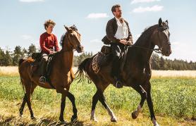Konje krast | Z LIFFa v Loko
